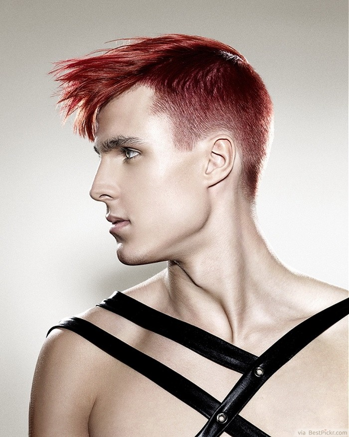 Hairstyles For Goth Guys : ... Hairstyle For Young Men http://bestpickr.com/punk-hairstyles