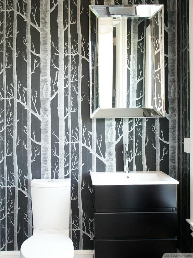 Small Black Bathroom With Forest Themed Wallpaper
