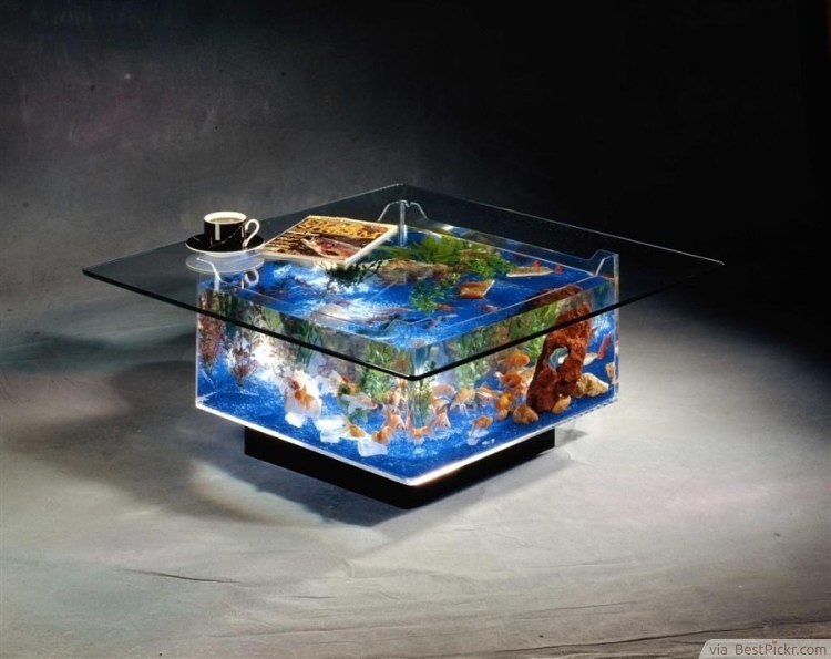 Fish Tank Acrylic Coffee Table Design ❥❥❥ Http://bestpickr.com