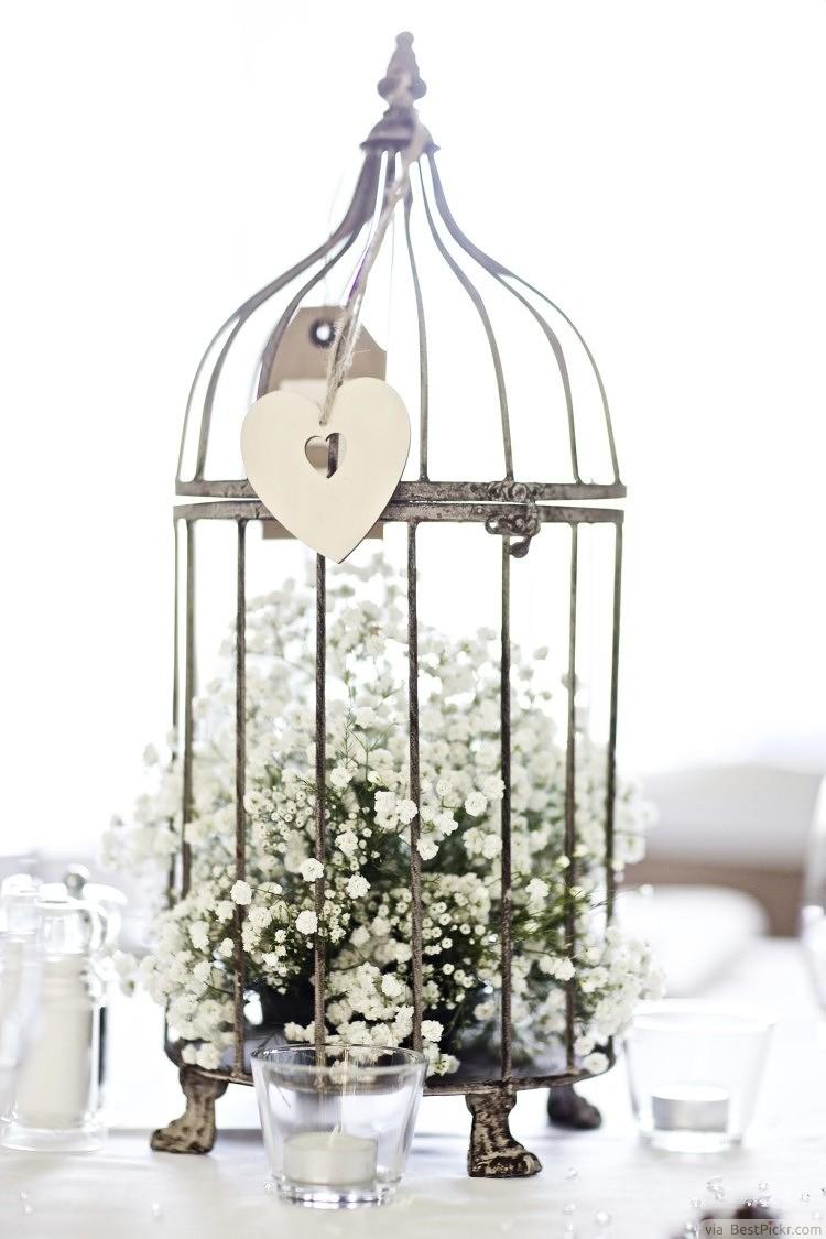 Babys Breath In A Birdcage Wedding Centerpiece Bestpickr