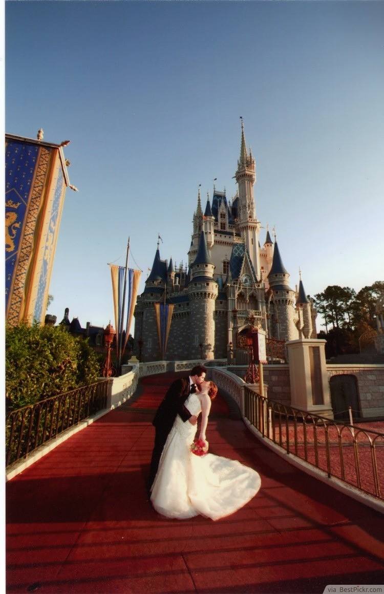 A Wedding Reception At A Theme Park Bestpickr