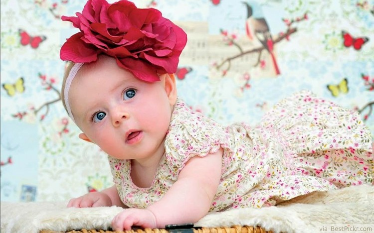 Cute newborn girl in awe and wonder with beautiful red rose ❥❥❥ http bestpickr com cute baby girls boys photos