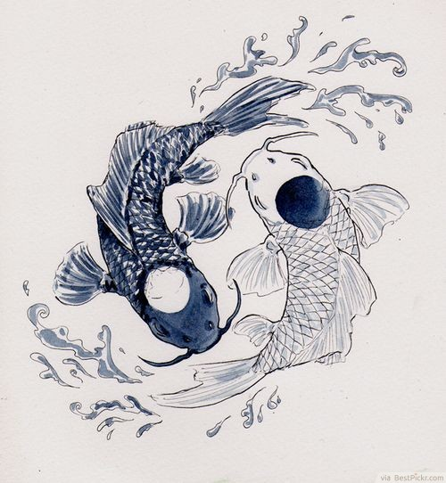 The gallery for yin yang koi fish tumblr for Koi fish yin yang tattoo