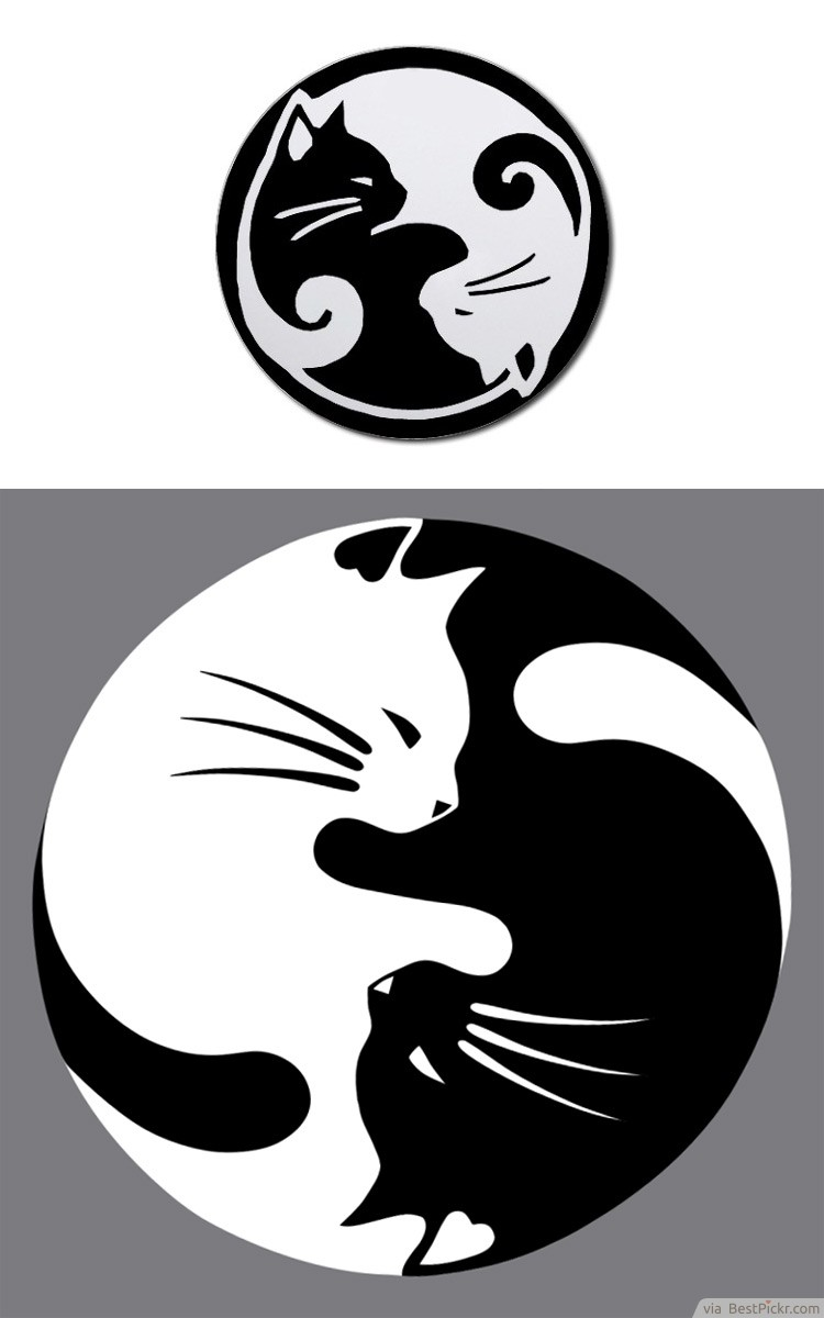 30 cool yin yang tattoos perfect designs ideas bestpickr yin yang lucky cat tattoo idea buycottarizona